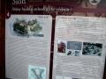 Informační tabule na Sioně